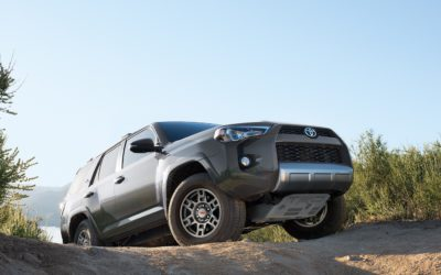 After all these years, still taming the wild in 4Runner style!